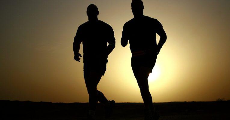 muskelaufbau-und fitness-durch-ems.jpg