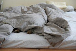 Die richtige Matratzenpflege im Alltag