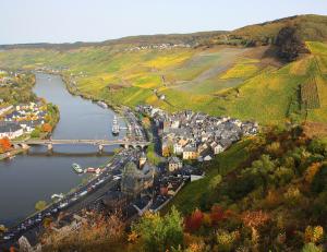 Die Anbaugebiete der deutschen Weine